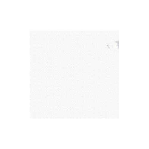 Tinta Weinstcok blanco cubritivo