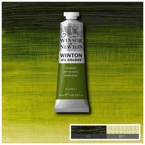 Oleo Winsor & Newton verde vejiga