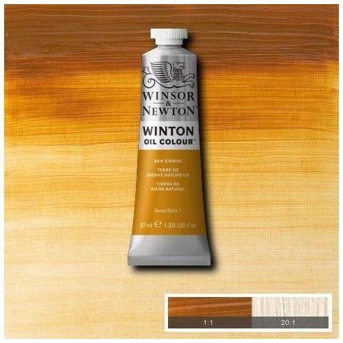 Oleo Winsor & Newton siena natural