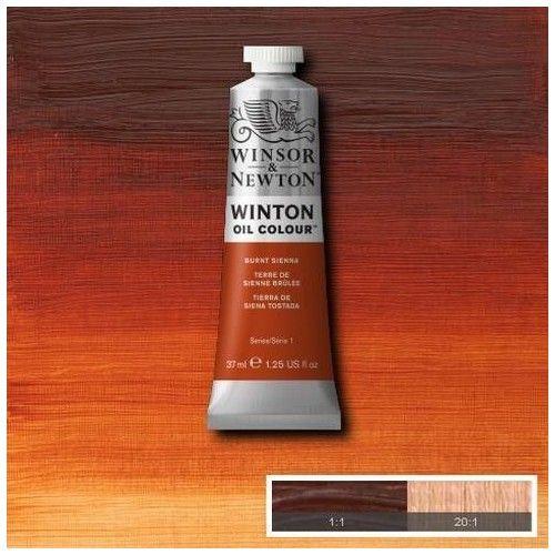 Oleo Winsor & Newton tierra de siena tostada