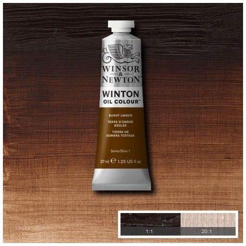 Oleo Winsor & Newton tierra de sombra tostada
