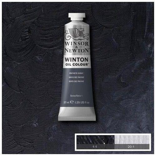 Oleo Winsor & Newton gris de payne
