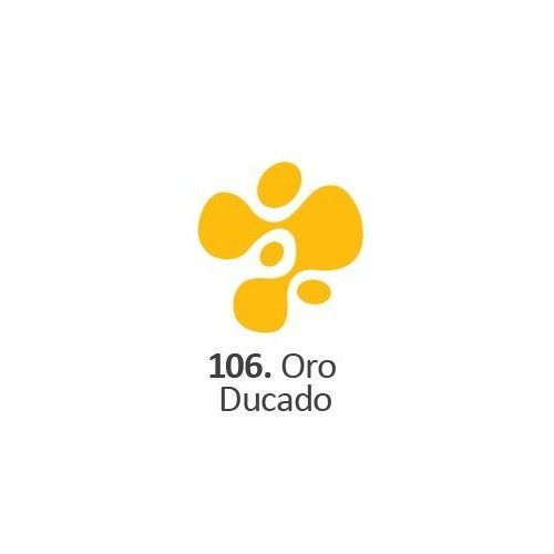 Acrilico Eterna Profesional 200ml Oro Ducado